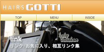 gotti3